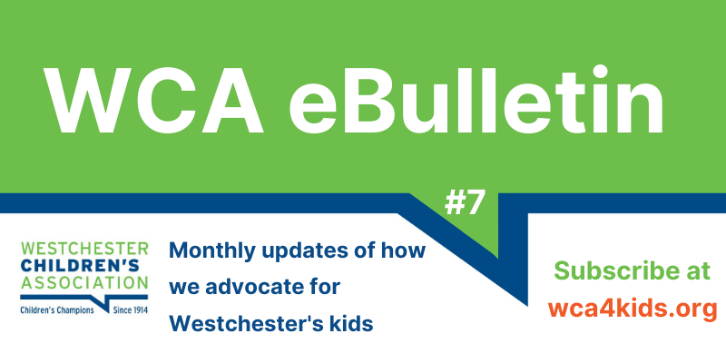 WCA eBulletin #4 published April 2020